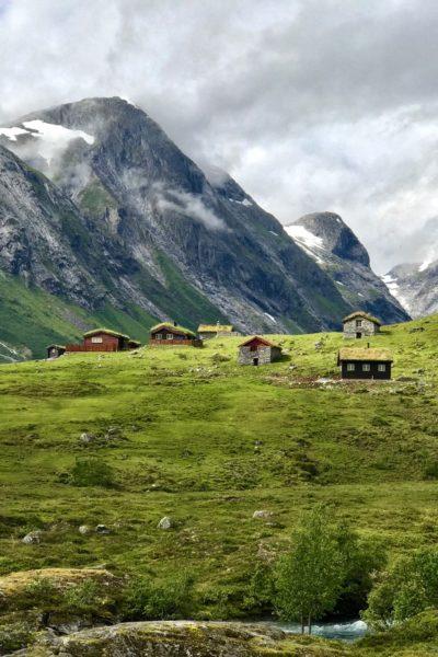 Vi elsker norsk natur. Flått til fjells!